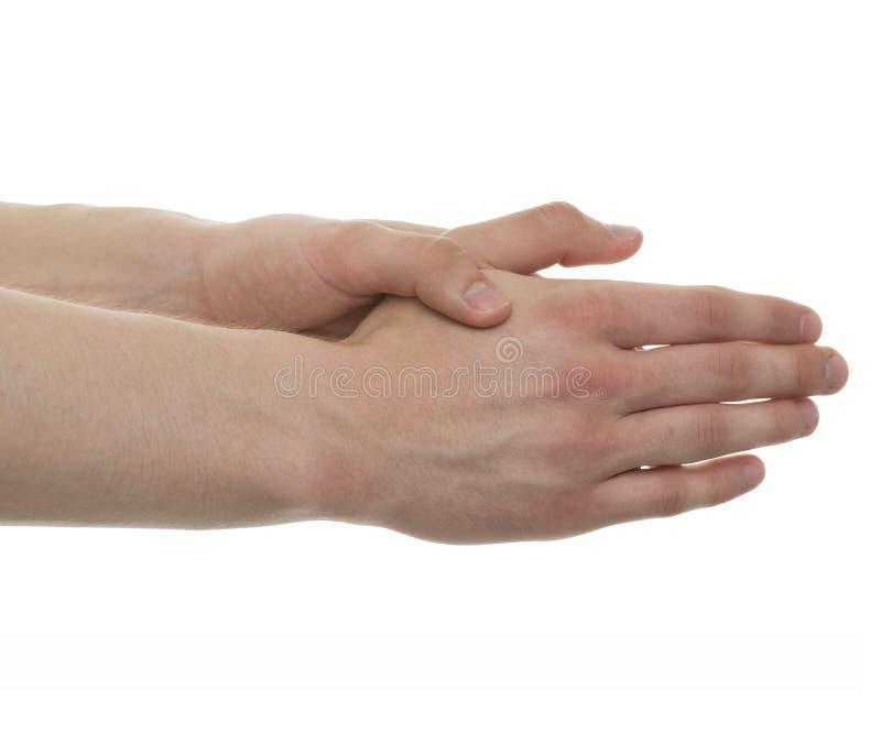 Männliche Handanatomie - Atelieraufnahme mit der Illustration 3D an lokalisiert stock abbildung