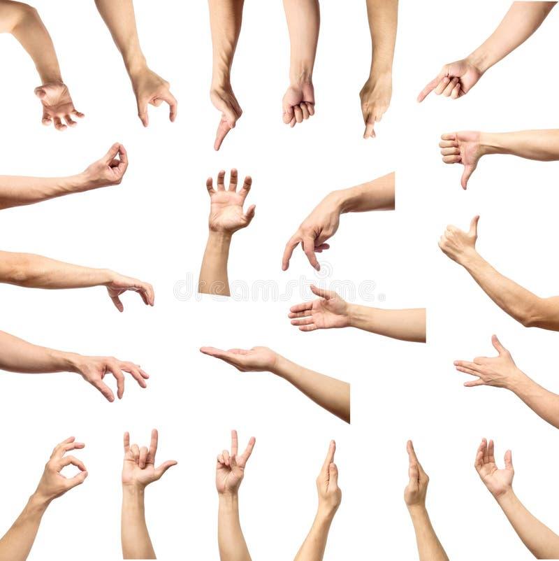 Männliche Handzeichen- und Zeichensammlung lokalisiert über weißem backgr stockbild