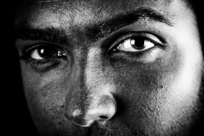 Männliche intensive Augen stockfotos
