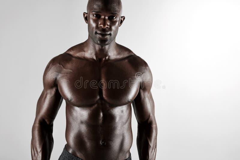 Männliche junge afrikanische männliche Modellaufstellung hemdlos lizenzfreie stockfotos