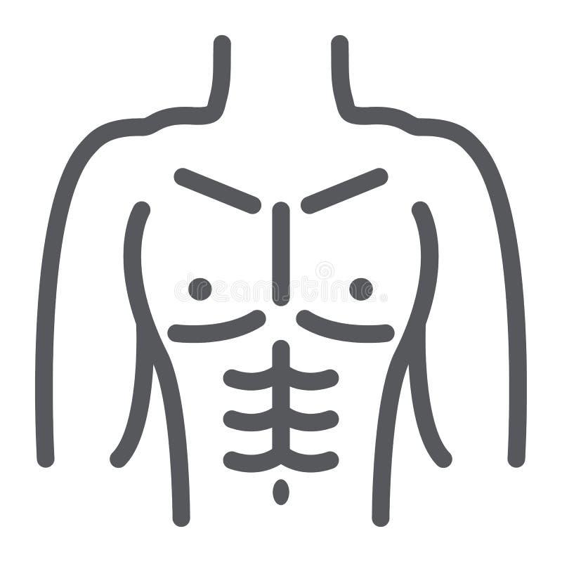 Männliche Torsolinie Ikone, Diät und Körper, Mannzahl Zeichen, Vektorgrafik, ein lineares Muster auf einem weißen Hintergrund lizenzfreie abbildung