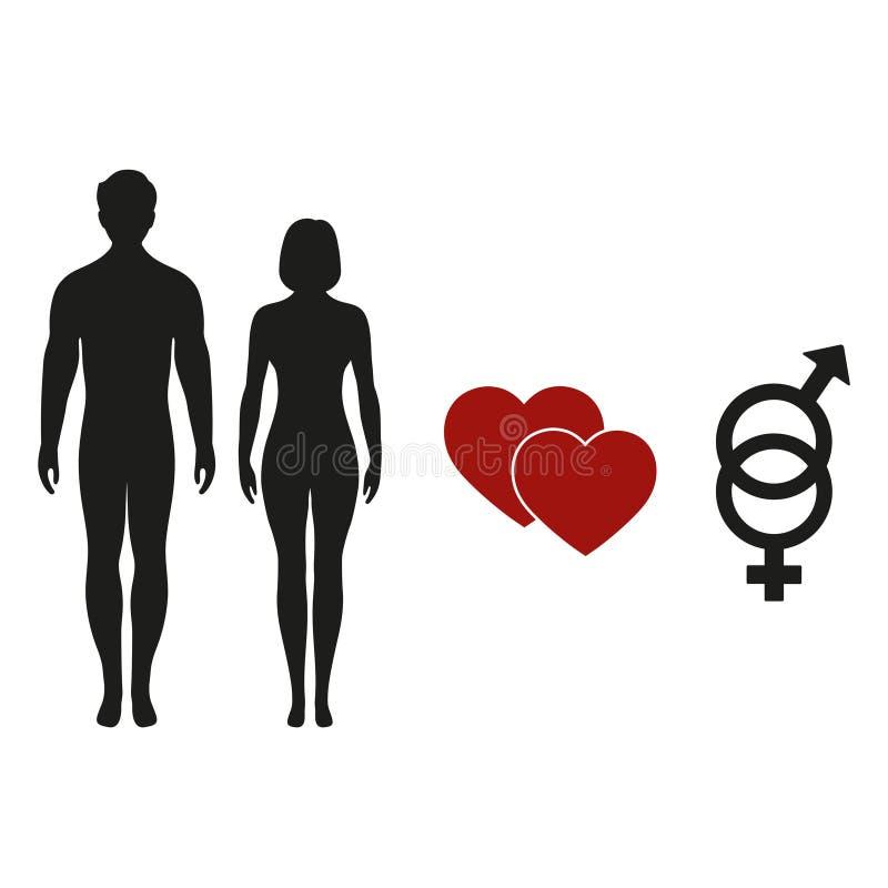 Männliche und weibliche Symbole Sexikone Geschlechtszeichen Mann- und Frauenikone vektor abbildung