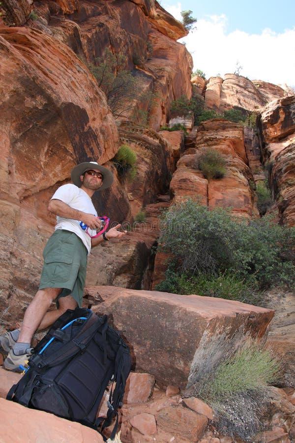 Männlicher Bergsteiger im Zion Park stockfotos