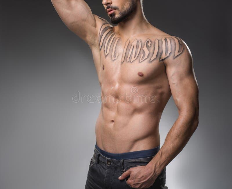 Männlicher bloßer Körper mit den entwickelten Muskeln lizenzfreie stockbilder