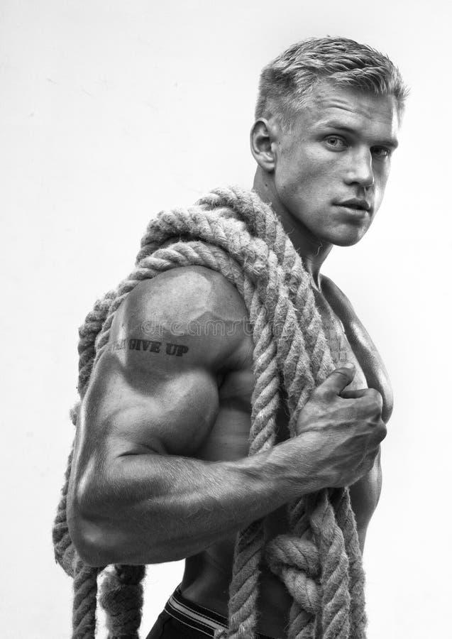 Männlicher Bodybuilder lizenzfreie stockbilder