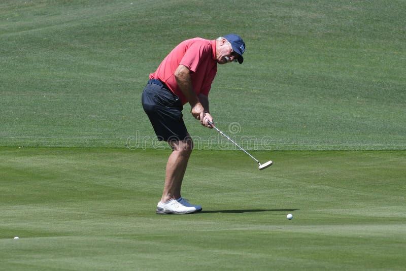 Männlicher Golfspieler, der einen Golfball von einer hinteren Ansicht schlägt stockbild
