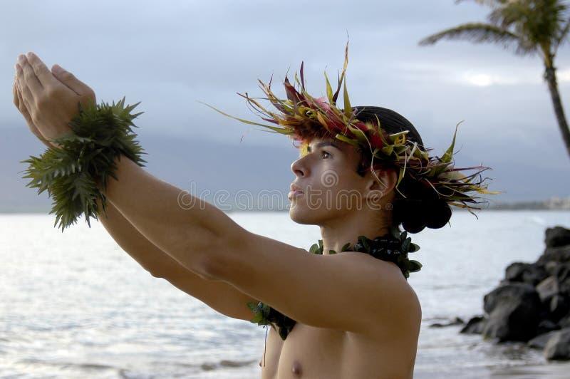 Männlicher hula Tänzer, der Geschenke zu den Himmeln betet und gestikuliert stockfotos