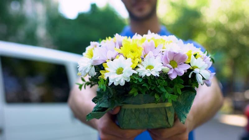 Männlicher Kurier, der Blumengeschenk, floristischen Zustelldienst, romantische Überraschung zeigt lizenzfreies stockfoto
