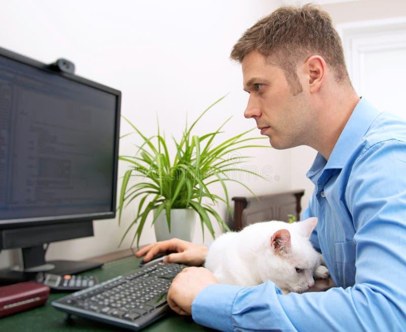 Männlicher Programmierer stockfoto