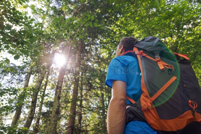 Männlicher Wanderer mit dem großen Rucksack, der Sonnenlicht im Wald betrachtet stockbild