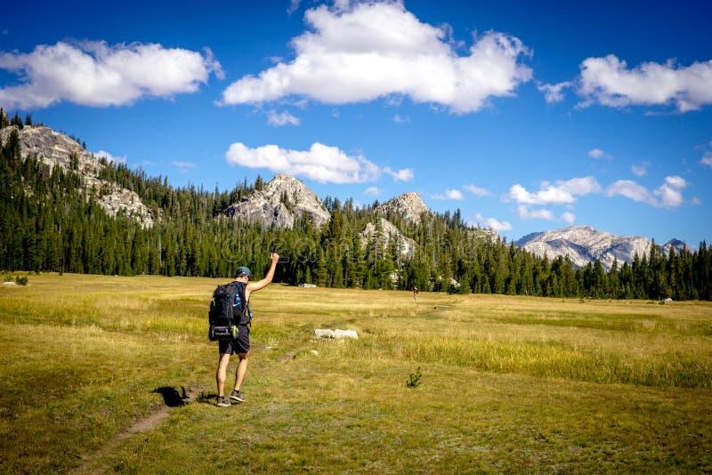 Männlicher Wanderer mit seiner Faust herauf das Gehen auf dem grünen schönen Gebiet lizenzfreies stockfoto