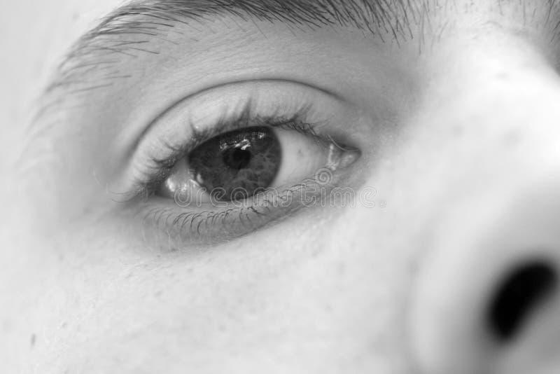 Männliches Auge stockbild