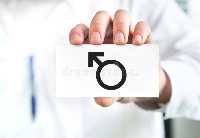 Männliches Gesundheitskonzept Doktor, der Visitenkarte mit Mannsymbol hält Urologe oder Spezialist stockbild