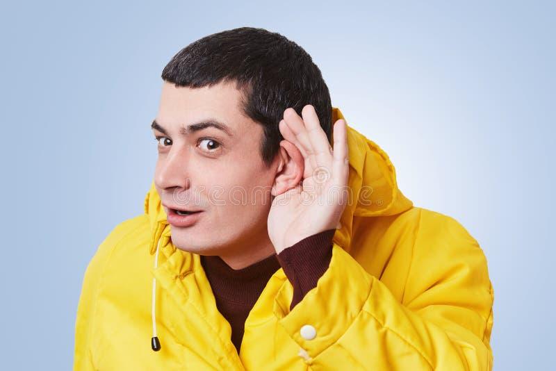Männliches Modell der neugierigen Brünette versucht, etwas zufällig zu hören, hält Hand auf Ohr, hört Klatsch im Folgenden Raum,  lizenzfreie stockbilder