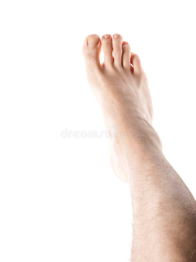 Männliches rechtes Bein lizenzfreies stockfoto