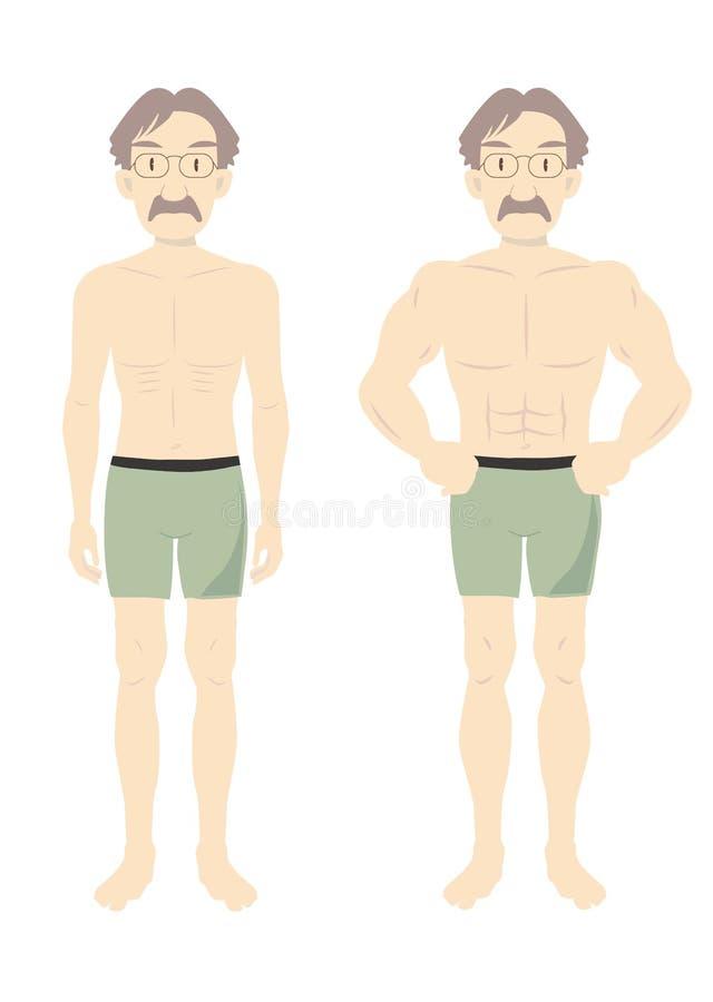 Mäns mitt-b för kropp för skönhetmuskel stock illustrationer