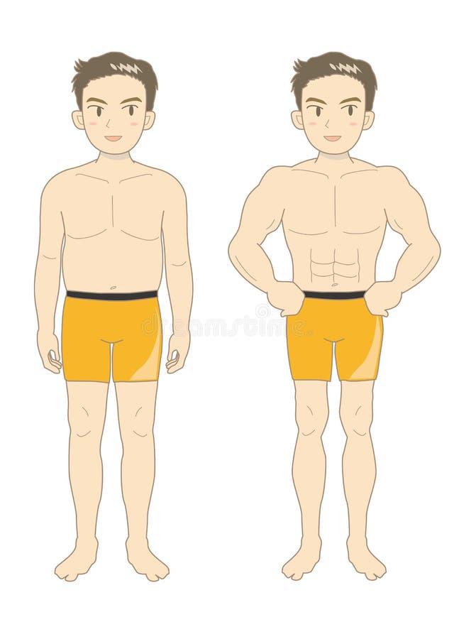 Mäns ungdom-En för kropp för skönhetmuskel vektor illustrationer