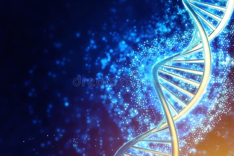 Mänsklig DNAspiraltråd royaltyfri illustrationer