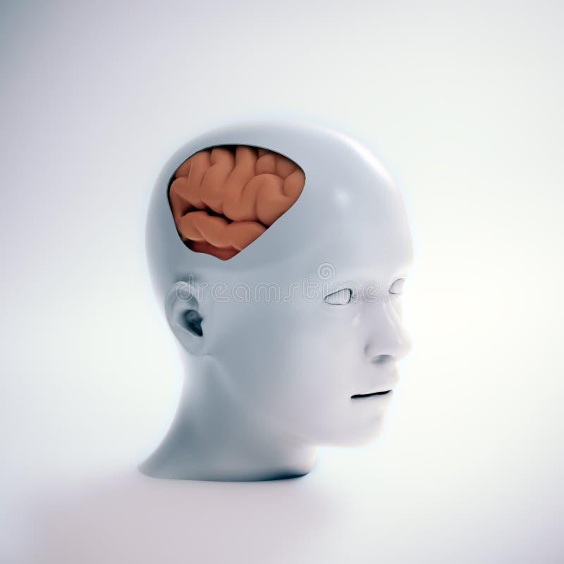 Mänsklig intelligens och psykologisk utveckling royaltyfri illustrationer