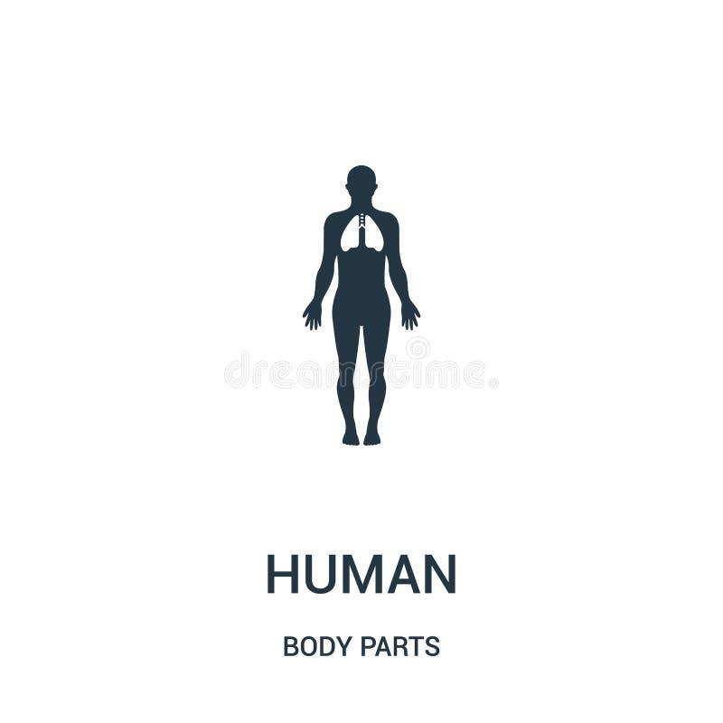 mänsklig kontur med fokusen på lungasymbolsvektorn från kroppsdelsamling Tunn linje mänsklig kontur med fokusen på stock illustrationer