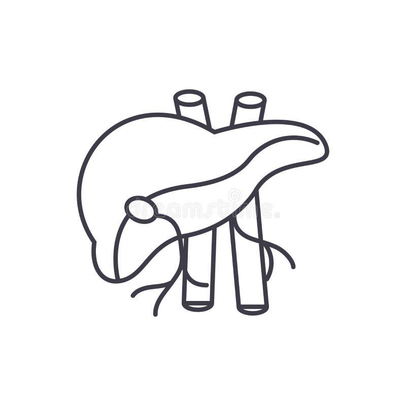 Mänsklig leverlinje symbolsbegrepp Linjär illustration för mänsklig levervektor, symbol, tecken vektor illustrationer