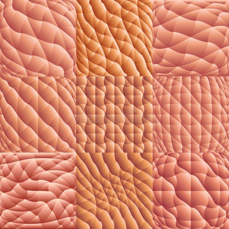 mänsklig makrohudvektor stock illustrationer