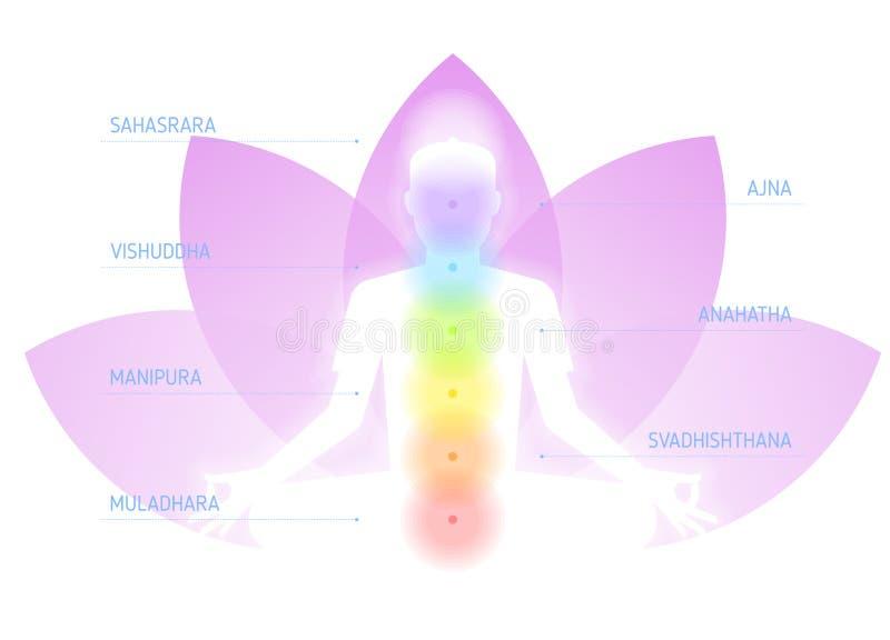Mänsklig meditera kontur med chakras på lotusblommablomman stock illustrationer