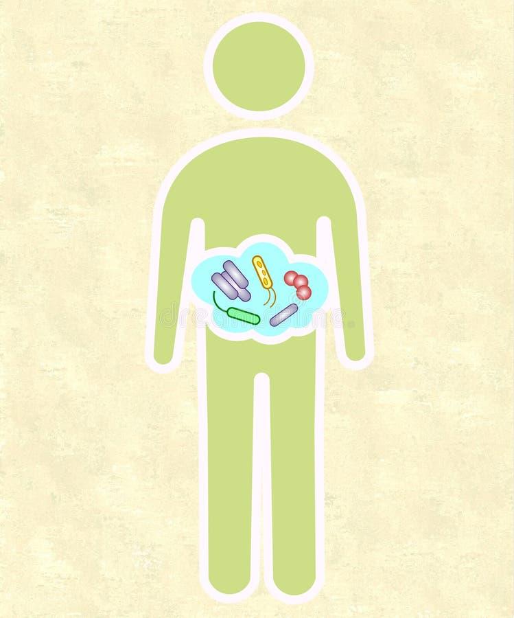 Mänsklig microbiome vektor illustrationer