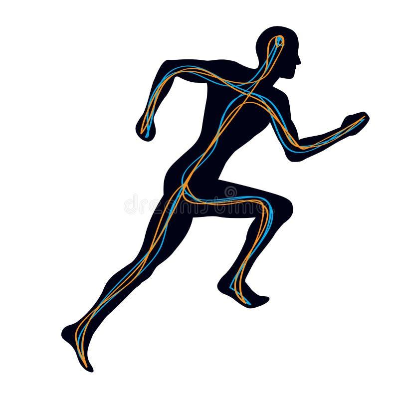 mänsklig nervsystem royaltyfri illustrationer