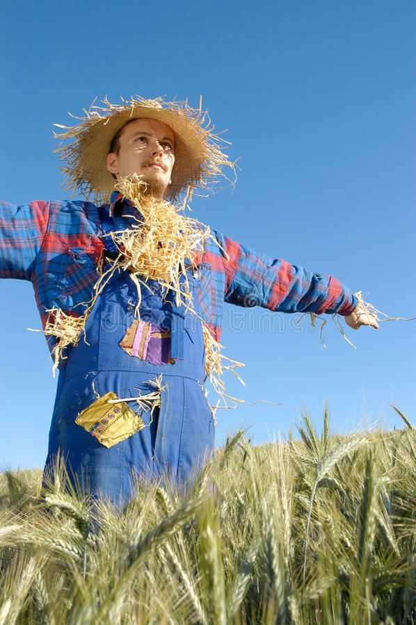 Download Mänsklig scarecrow fotografering för bildbyråer. Bild av mänskligt - 284029
