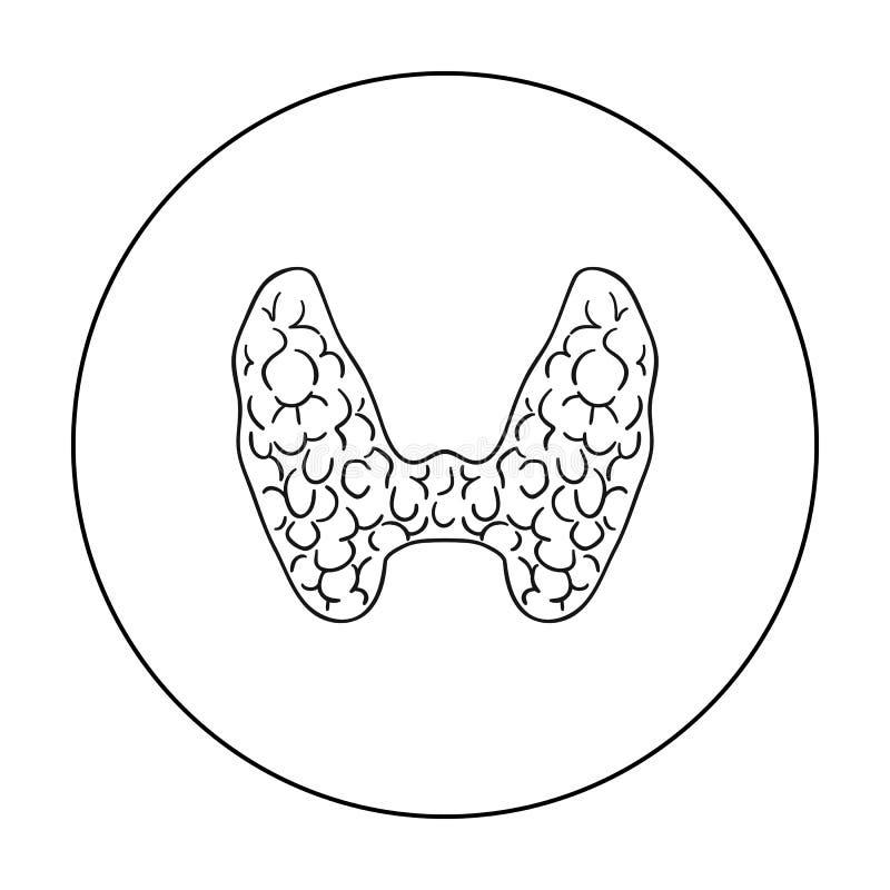 Mänsklig sköldkörtelsymbol i översiktsstil som isoleras på vit bakgrund För symbolmateriel för mänskliga organ illustration för v royaltyfri illustrationer