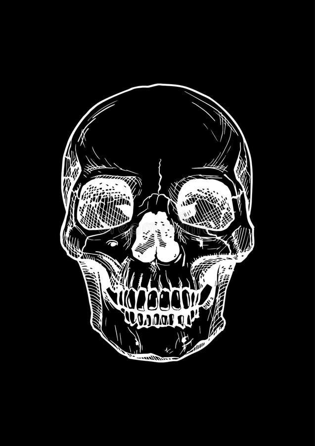 Mänsklig skalle med en lägre käke royaltyfri illustrationer