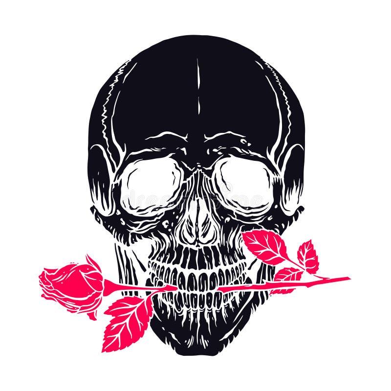 Mänsklig skalle med en ros royaltyfri illustrationer