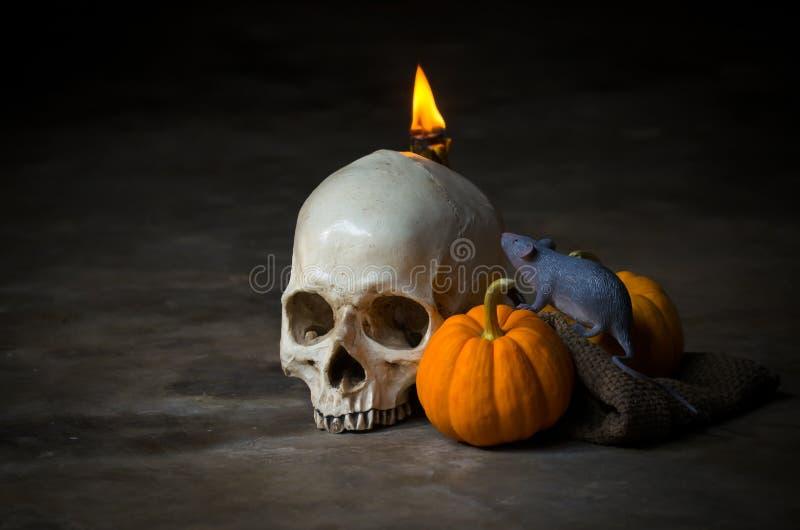Mänsklig skalle med gul pumpa och belysningstearinljuset arkivfoto