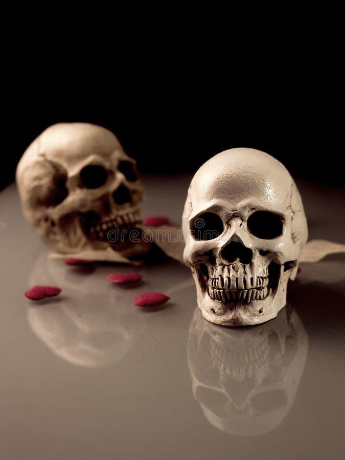 Mänsklig skalle med reflexion på golvet och den röda hjärtan i concep fotografering för bildbyråer