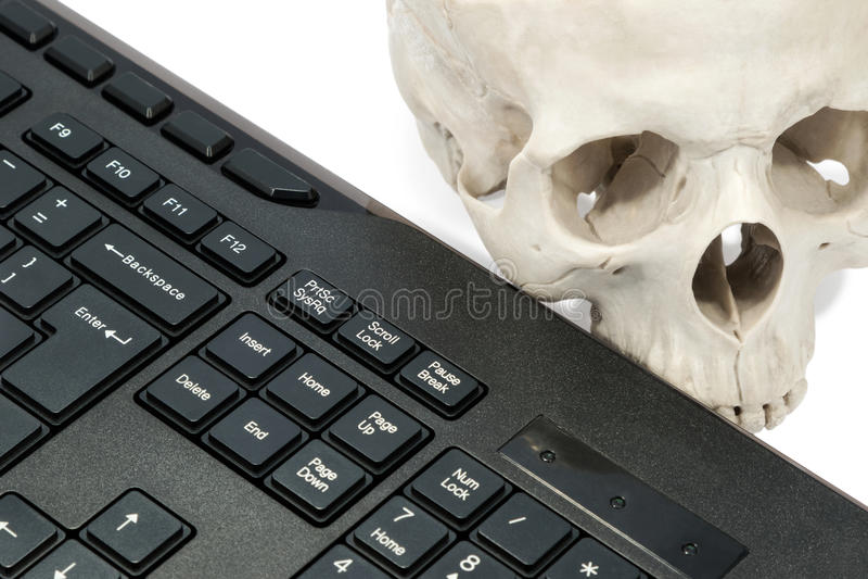 Mänsklig skalle nära tangentbordet royaltyfri fotografi