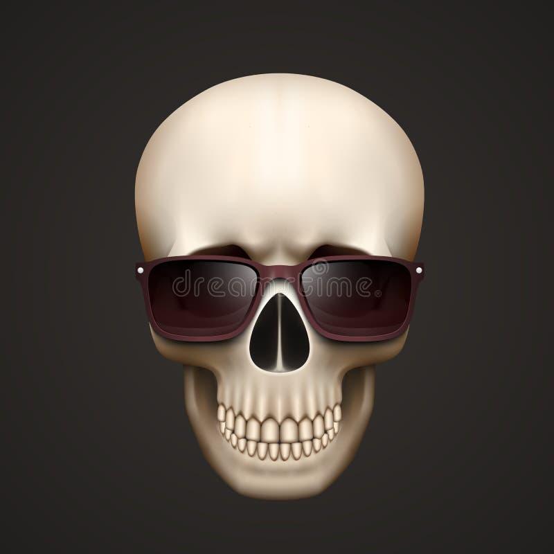 Mänsklig skalle som isoleras med solglasögon stock illustrationer
