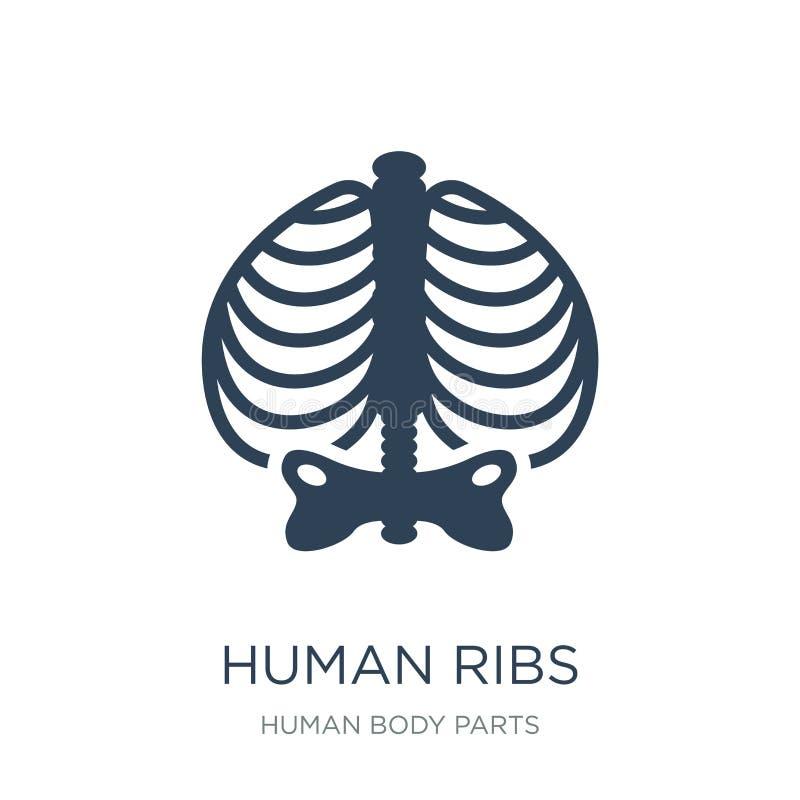 mänsklig stödsymbol i moderiktig designstil Människan Ribs symbolen som isoleras på vit bakgrund mänsklig modern stödvektorsymbol vektor illustrationer