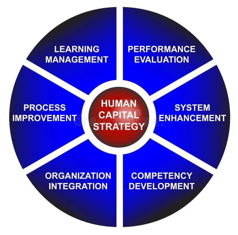 mänsklig strategi för affärscapitaldiagram royaltyfri illustrationer
