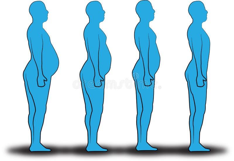 Mänsklig viktförlust royaltyfri illustrationer