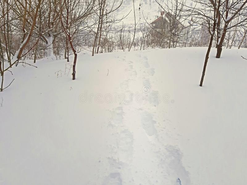 Mänskliga fotspår i den djupa snön December 2009 royaltyfria bilder