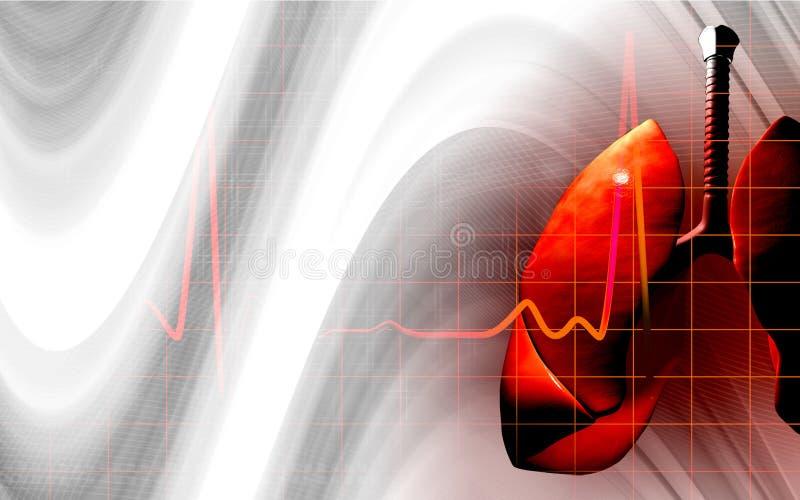 mänskliga lungs royaltyfri illustrationer