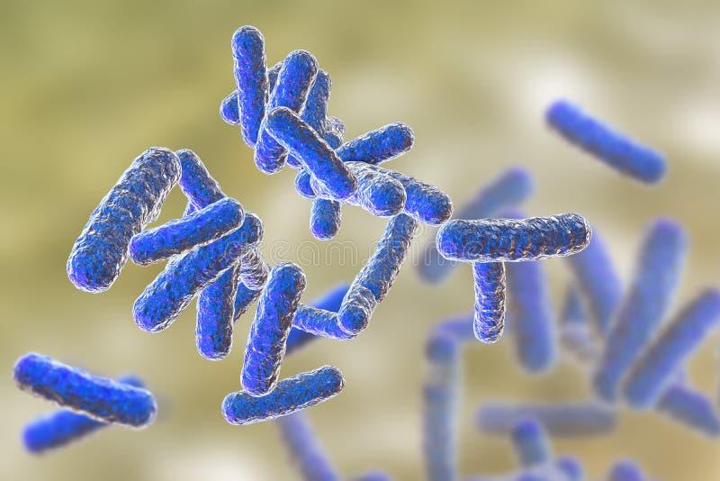 Mänskliga patogna bakterier royaltyfri illustrationer