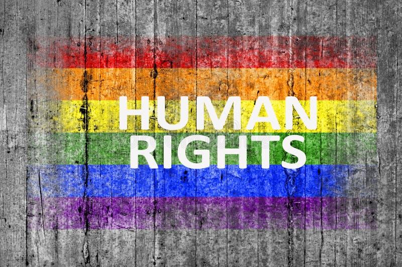 Mänskliga rättigheter och LGBT-flaggan som målas på bakgrundstexturgrå färger, hårdnar arkivbild