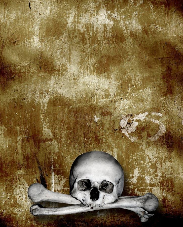 Mänskliga skallar och ben stock illustrationer