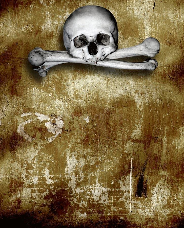 Mänskliga skallar och ben royaltyfri illustrationer