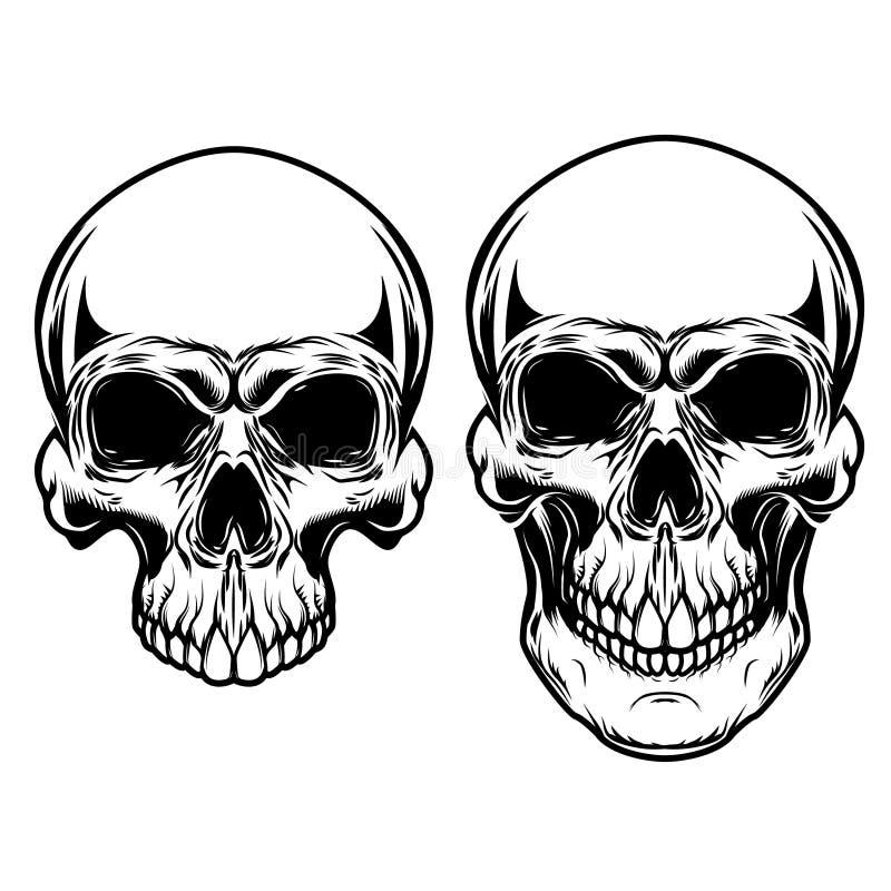 Mänskliga skallar på vit bakgrund Planlägg beståndsdelar för logoen, etiketten, emblemet, tecken stock illustrationer