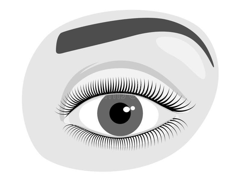 Mänskligt öga för framsidafront_A stock illustrationer