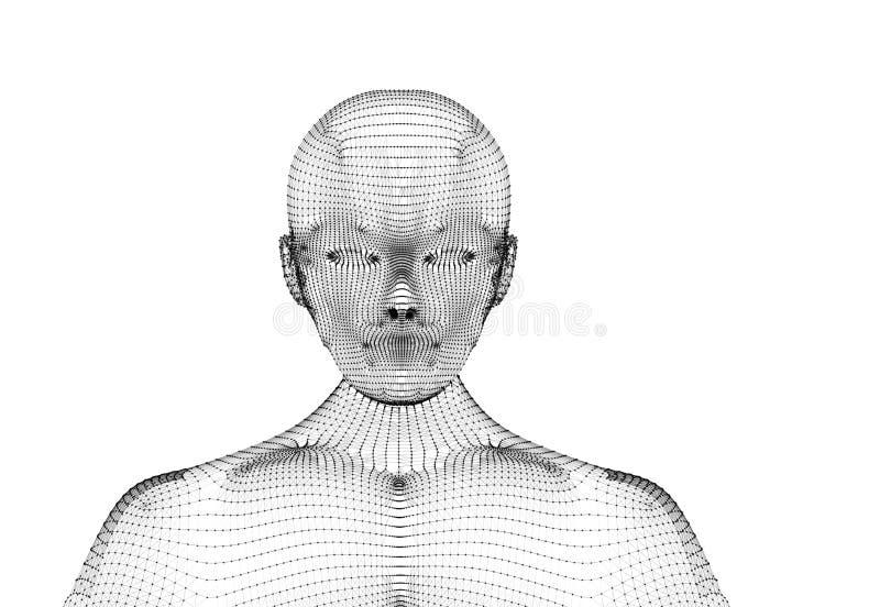 mänskligt Den Wireframe modellen med anslutning fodrar på vit bakgrund royaltyfri illustrationer