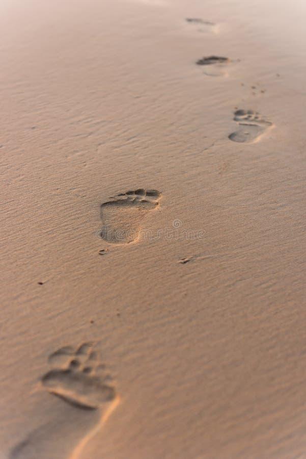 Mänskligt fotspår på strandsand arkivbild